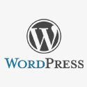 WordPress 2.9.2 Upgrade Security Fix