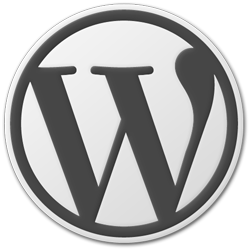WordPress 3.1.1 Update