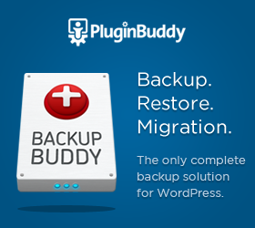 BackupBuddy for WordPress Security